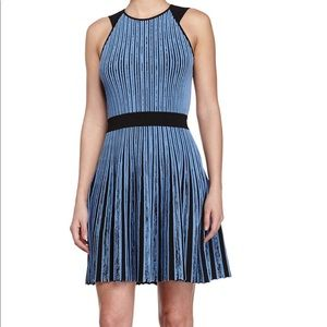 Opening Ceremony New stripe flare dress. XS